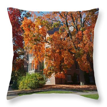 Throw Pillow featuring the photograph WPA by Joseph Yarbrough