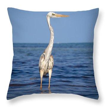 Wurdemann's Heron Throw Pillow