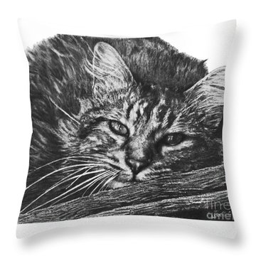 Wyatt Throw Pillow