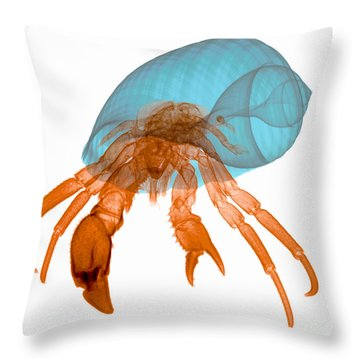 X-ray Of Hermit Crab Throw Pillow by Ted Kinsman
