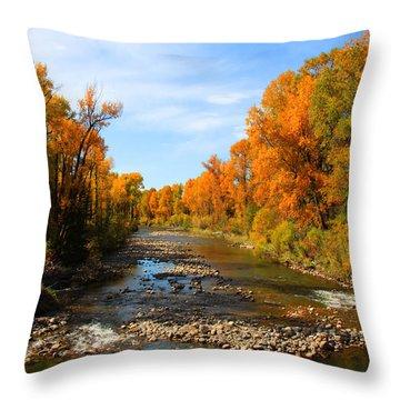 Yampa River Throw Pillow by Dana Kern