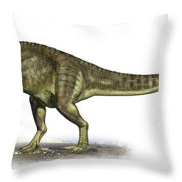 Yangchuanosaurus Shangiouensis Throw Pillow by Sergey Krasovskiy