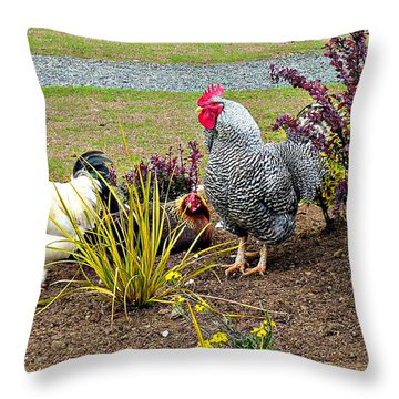 Yard Chickens Throw Pillow