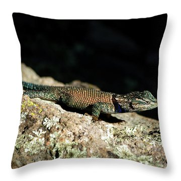 Throw Pillow featuring the photograph Yarrow's  by Vicki Pelham