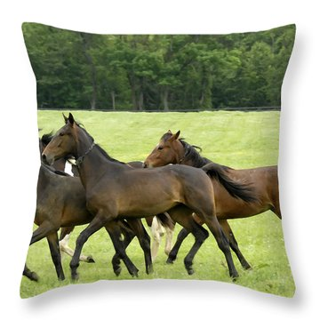 Yearlings On The Run Throw Pillow