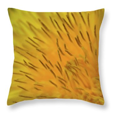 Throw Pillow featuring the photograph Yellow Beauty by JD Grimes