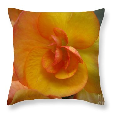 Throw Pillow featuring the photograph Yellow Begonia by Arlene Carmel