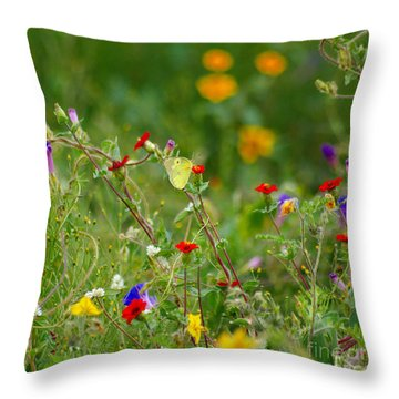 Throw Pillow featuring the photograph Yellow Butterfly In Meadow by John  Kolenberg
