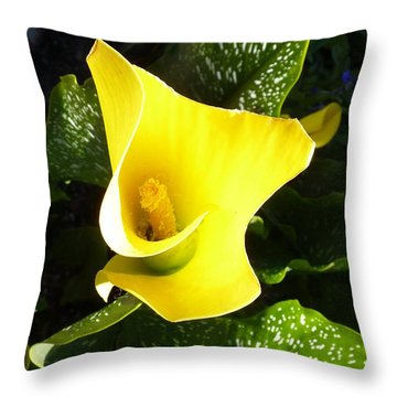 Yellow Calla Lily Throw Pillow by Carla Parris