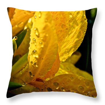 Yellow Canna Lily Throw Pillow by Susan Herber