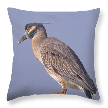 Throw Pillow featuring the photograph Yellow Crowned Night Heron by Brian Wright