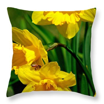 Throw Pillow featuring the photograph Yellow Daffodils And Honeybee by Kay Novy