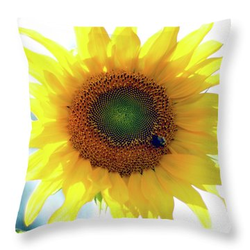 Yellow Day Throw Pillow by Joanne Brown