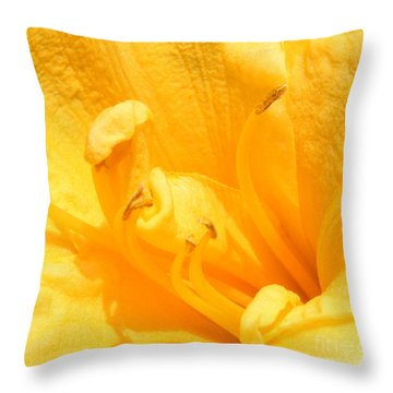 Throw Pillow featuring the photograph Yellow Day Lily by Michael Waters