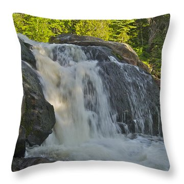 Yellow Dog Falls 4192 Throw Pillow by Michael Peychich