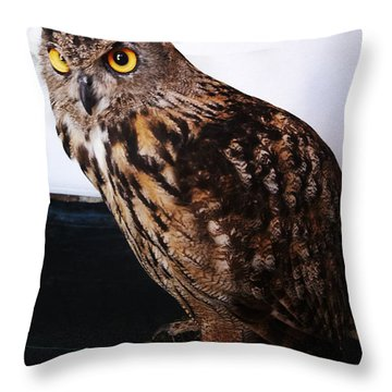 Yellow-eyed Owl Side Throw Pillow