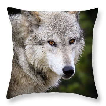 Yellow Eyes Throw Pillow by Steve McKinzie