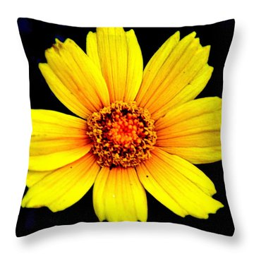 Yellow Flower Throw Pillow by Marty Koch