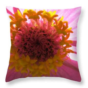 Throw Pillow featuring the photograph Yellow Flowerettes Around by Tina M Wenger