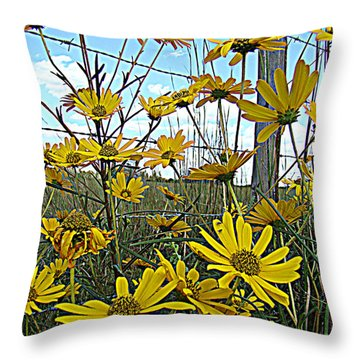 Throw Pillow featuring the photograph Yellow Flowers By The Roadside by Alice Gipson