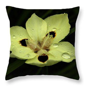 Yellow Iris With Rain Drops Throw Pillow