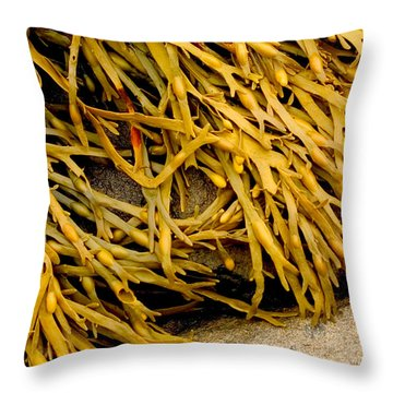 Yellow Kelp Throw Pillow by Brent L Ander