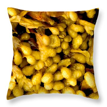 Yellow Kelp Pods Throw Pillow by Brent L Ander