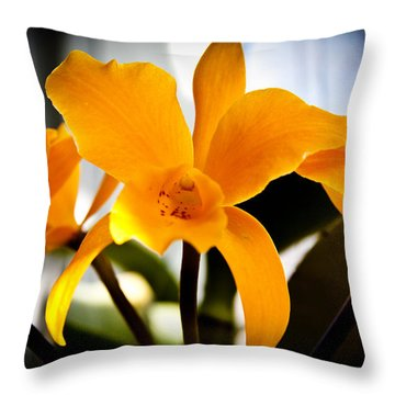 Yellow Magic Throw Pillow by David Patterson