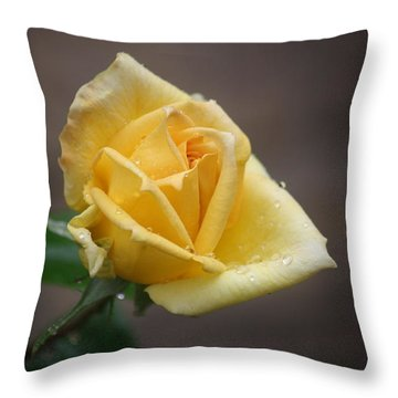 Throw Pillow featuring the photograph Yellow Rose Of Texas by Donna  Smith