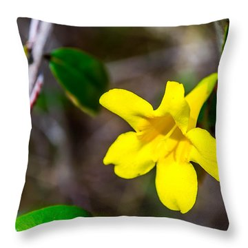 Throw Pillow featuring the photograph Yellow by Shannon Harrington