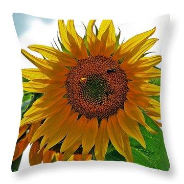 Yellow Sunflower Throw Pillow by Susan Leggett