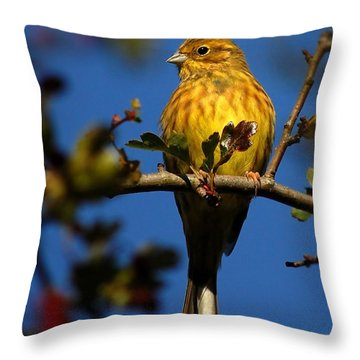 Yellowhammer Throw Pillow