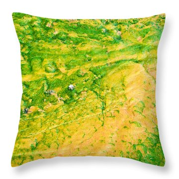 Yellowstone Abstract 1 Throw Pillow by Bob and Nancy Kendrick