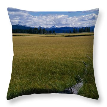 Throw Pillow featuring the photograph Yellowstone Log by J L Woody Wooden