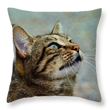 Yes I Am A Pretty Kitty Throw Pillow by Debbie Portwood