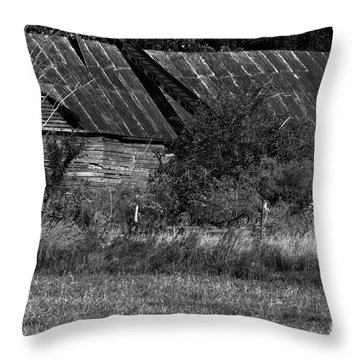 Yesterday's Barn Throw Pillow by Alan Look