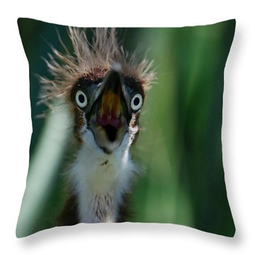Yikes Throw Pillow by Skip Willits