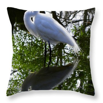 Yin And Yang Throw Pillow by Judy Wanamaker
