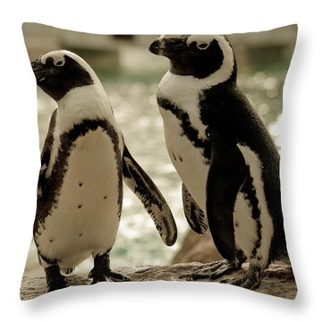 You Go First Throw Pillow by Trish Tritz