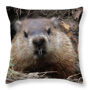 You Would Have A Dirty Face Too If You Lived Underground Throw Pillow