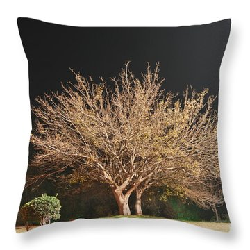 Throw Pillow featuring the photograph Young And Old - Winter by Erhan OZBIYIK