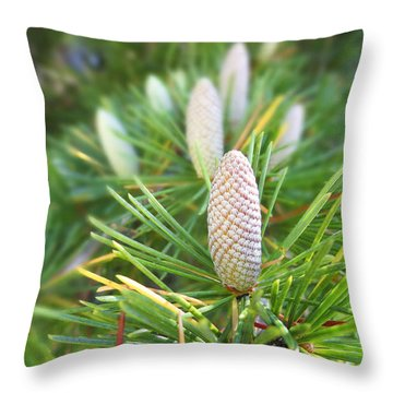 Young Pine Cones Throw Pillow by Anne Mott