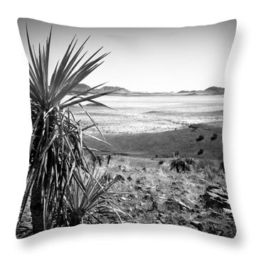 Yucca With A View Throw Pillow