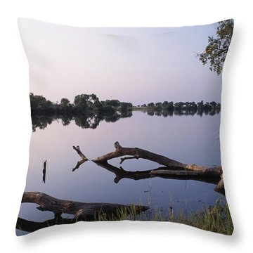 Zambesi River Throw Pillow by Axiom Photographic