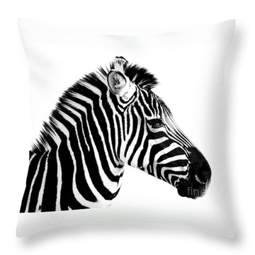 Throw Pillow featuring the photograph Zebra by Rebecca Margraf