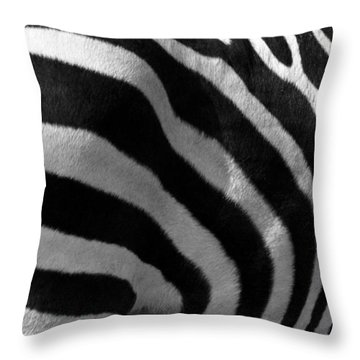 Throw Pillow featuring the photograph Zebra Stripes by Cindy Haggerty