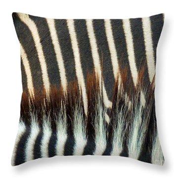 Zebra Stripes Throw Pillow by Methune Hively