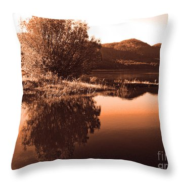 Zen Moment Throw Pillow by Greg Patzer