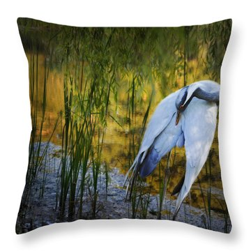 Zen Pond Throw Pillow