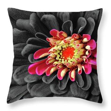 Zinnia Throw Pillow by Dave Mills